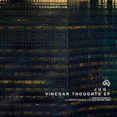 vinegar-web